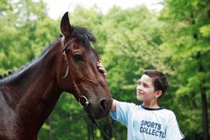 cours-équitation